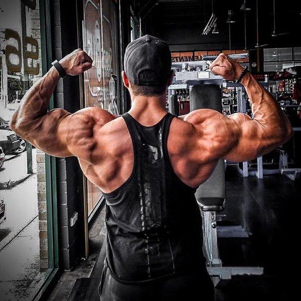 Убийственная тренировка плечевого пояса. 14034.jpeg