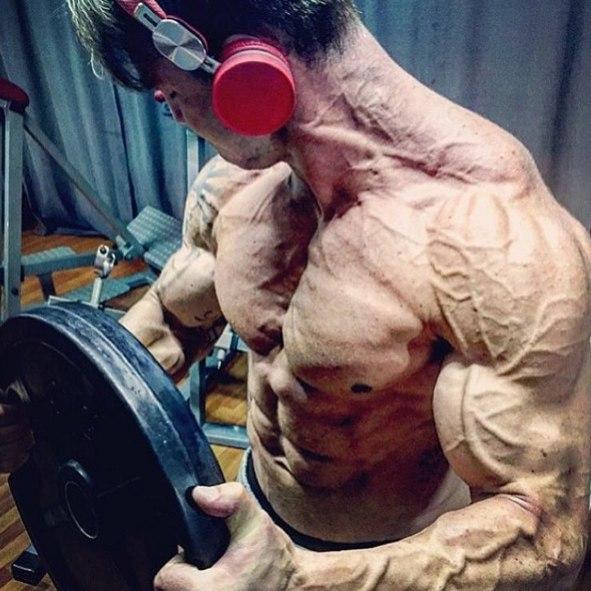 Адаптация мышц к физическим нагрузкам