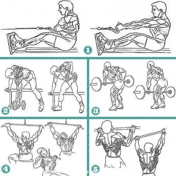 Топ 5 упражнений для мышц спины