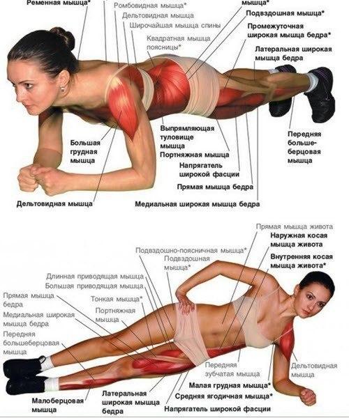 Планка одно из самых популярных и эффективных упражнений