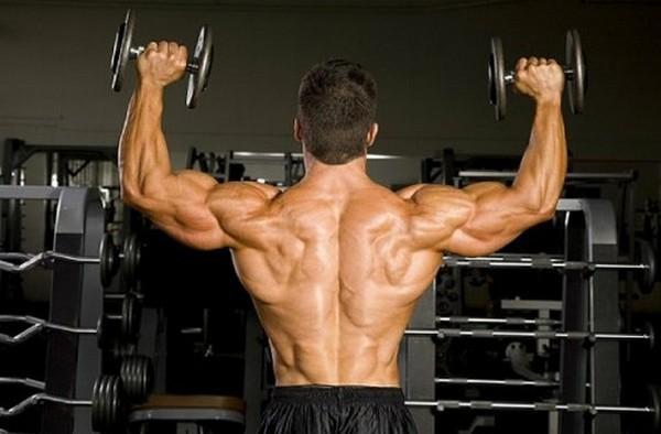 Золотые правила тренировки плеч. 14336.jpeg