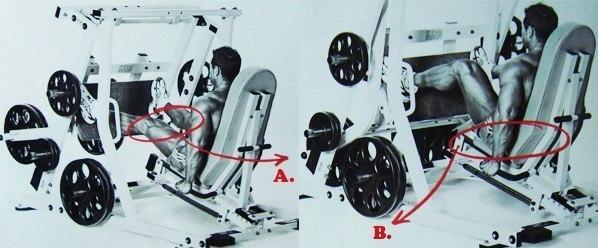 Правильная схема накачки ног. Правильная схема накачки ног 1