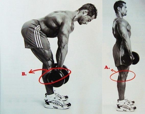 Правильная схема накачки ног. Правильная схема накачки ног 3