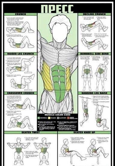 Если ты решил начать строительство своего тела, то этот материал специально для тебя. Если ты решил начать 6