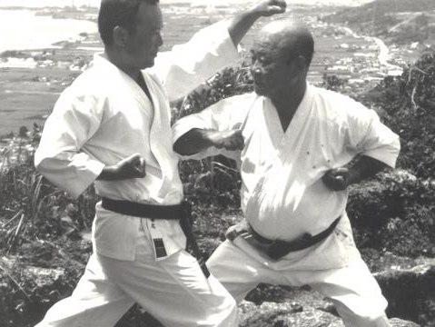 Законы мудрости жителей Окинавы