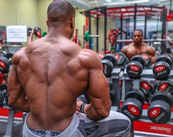 Какие мышцы следует тренировать вместе? Сочетание мышечных групп на тренировке
