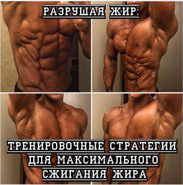 Калмыки и кубанцы самые позитивные люди в России. 13707.jpeg