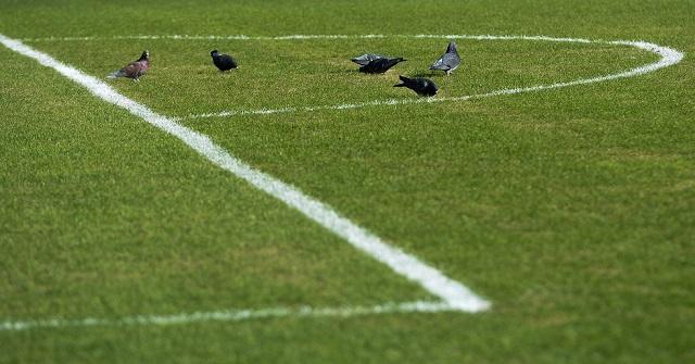 Чемпионат Росси по футболу. Последний тур – он трудный самый. 14755.jpeg