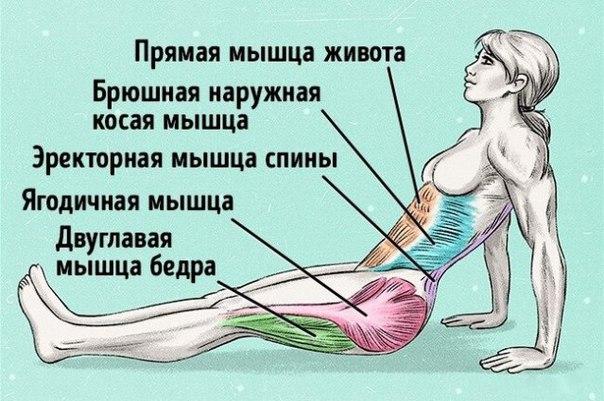 В Крыму болеют корью, завезенной с Украины и Польши. 13924.jpeg