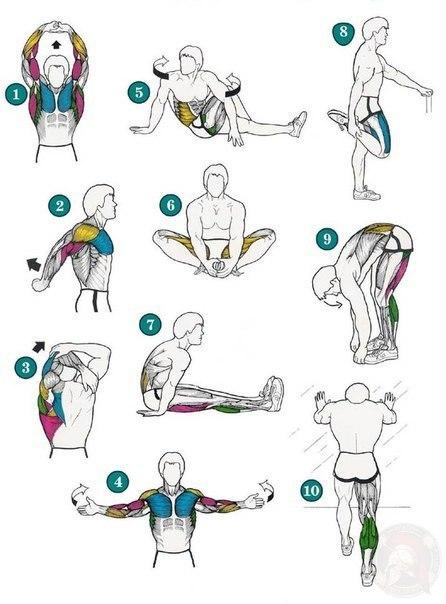 Комплекс упражнений на растяжку
