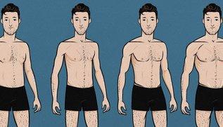 Питание и диета для эктоморфа