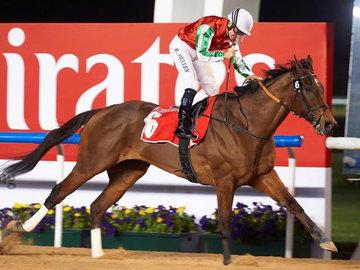 Скакун Кадырова внезапно выиграл престижные скачки в Дубае