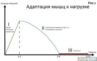 В Якутии занялись искусственным воспроизводством сибирского осетра