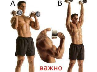 Как сделать мощные мускулистые плечи