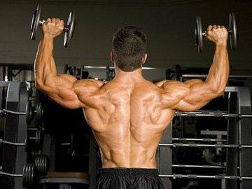 Золотые правила тренировки плеч