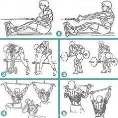 Топ-5 упражнений для мышц спины
